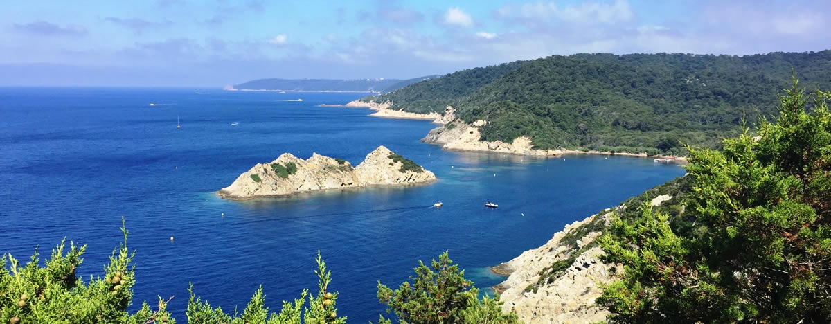 Villa For Rent Hyeres Islands Golden Islands - Location port cros